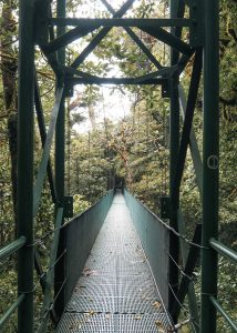 Costa Rica Monte Verde